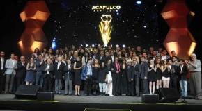 Nagrody TVyNovelas 2014: Wyniki