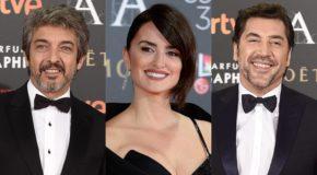 Ricardo Darín, Penélope Cruz i Javier Bardem w filmie Asghara Farhadiego