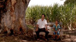Instytut Cervantesa: Co się kręci w Kolumbii