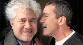 Antonio Banderas w boleści i w chwale u Almodóvara